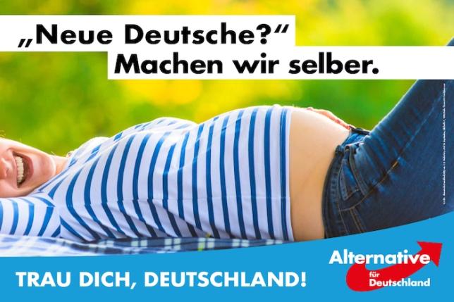 AfD Wahlplakat Bundestagswahl 2017